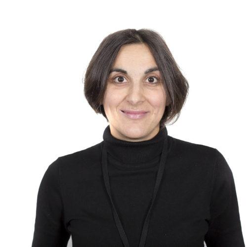 Nina Dzamashvili Fogelström