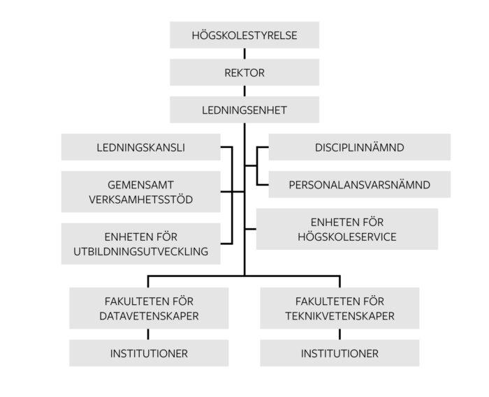 Organisationsschema, grafik